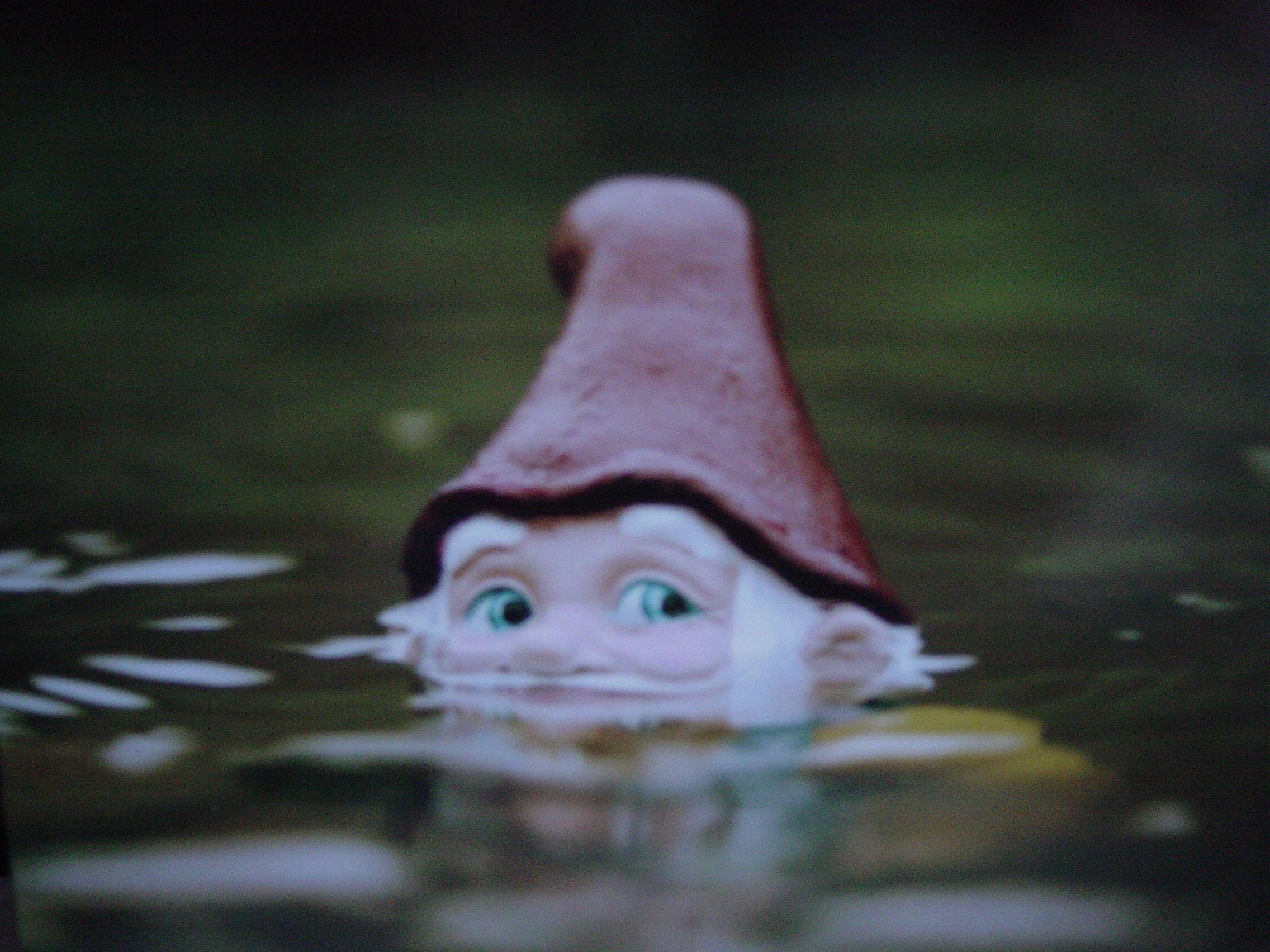 kerti tóban