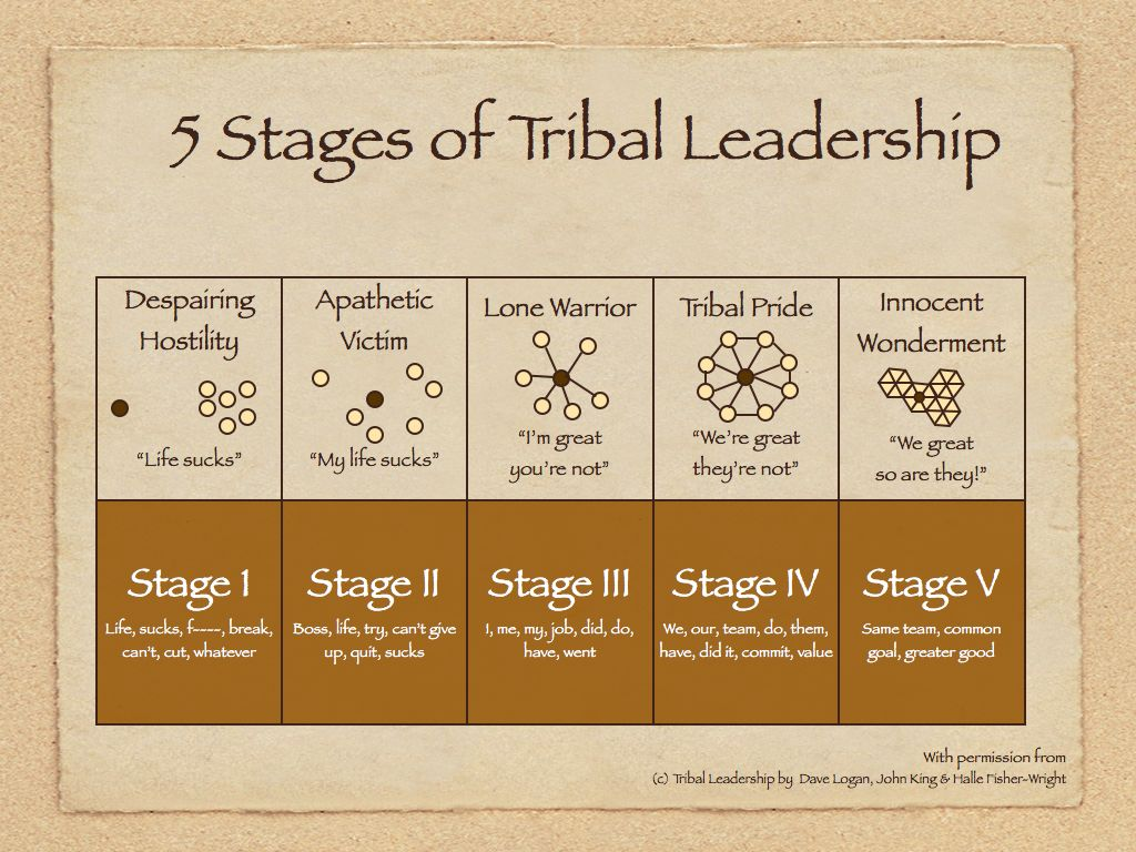 Image result for dave logan tribal leadership