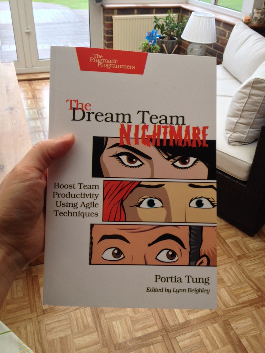 The Dream Team Nightmare Paperback