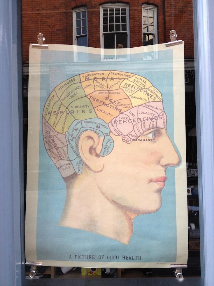 Stuff in Your Head